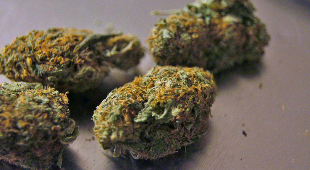 Mutmaßlicher Cannabis-Dealer in Wr. Neustadt festgenommen